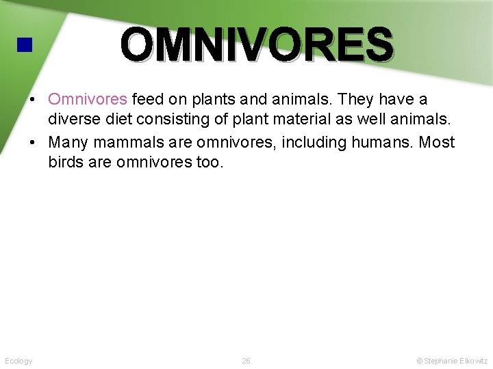 OMNIVORES • Omnivores feed on plants and animals. They have a diverse diet consisting