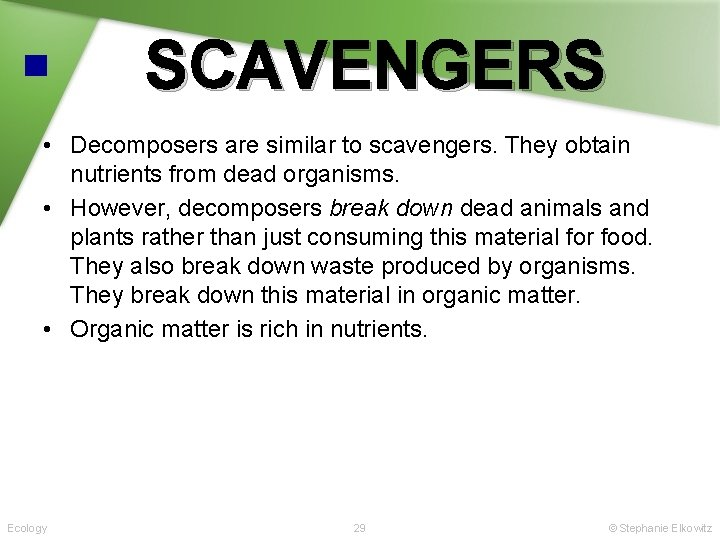 SCAVENGERS • Decomposers are similar to scavengers. They obtain nutrients from dead organisms. •