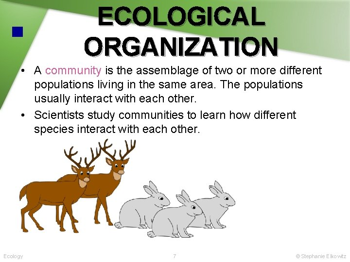 ECOLOGICAL ORGANIZATION • A community is the assemblage of two or more different populations