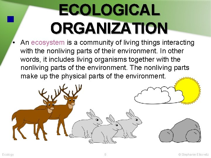ECOLOGICAL ORGANIZATION • An ecosystem is a community of living things interacting with the