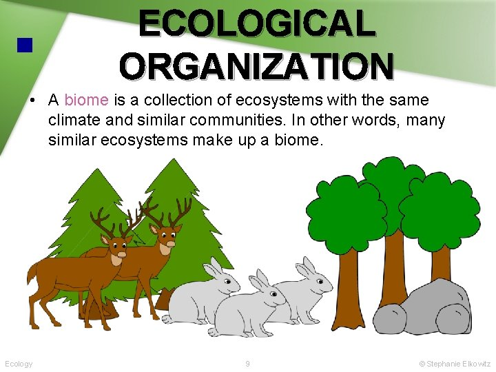 ECOLOGICAL ORGANIZATION • A biome is a collection of ecosystems with the same climate