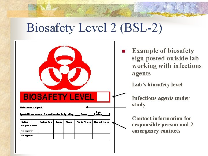 Biosafety Level 2 (BSL-2) n Example of biosafety sign posted outside lab working with