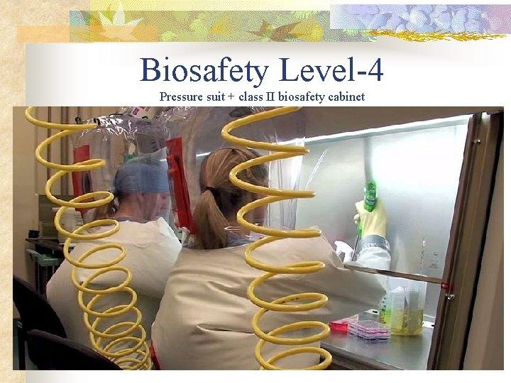 Biosafety Level-4 Pressure suit + class II biosafety cabinet