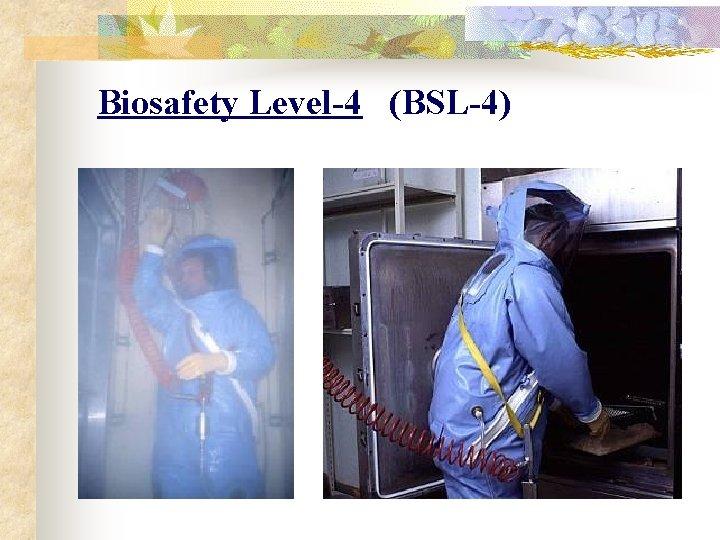 Biosafety Level-4 (BSL-4)