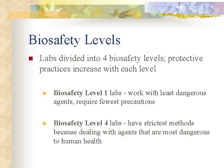 Biosafety Levels n Labs divided into 4 biosafety levels; protective practices increase with each