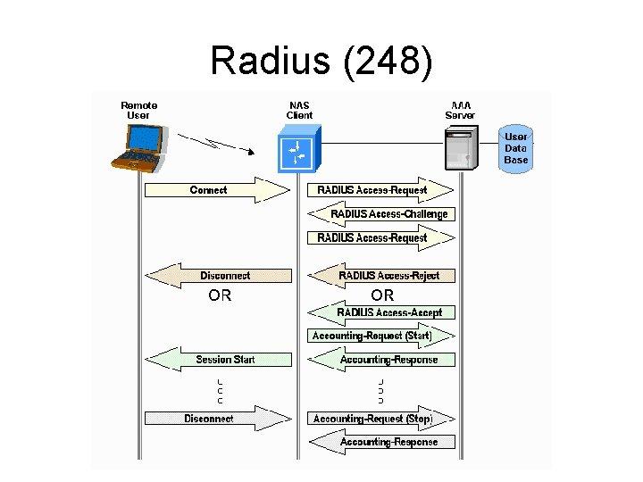 Radius (248)