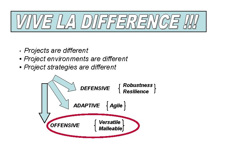 Projects are different • Project environments are different • Project strategies are different •