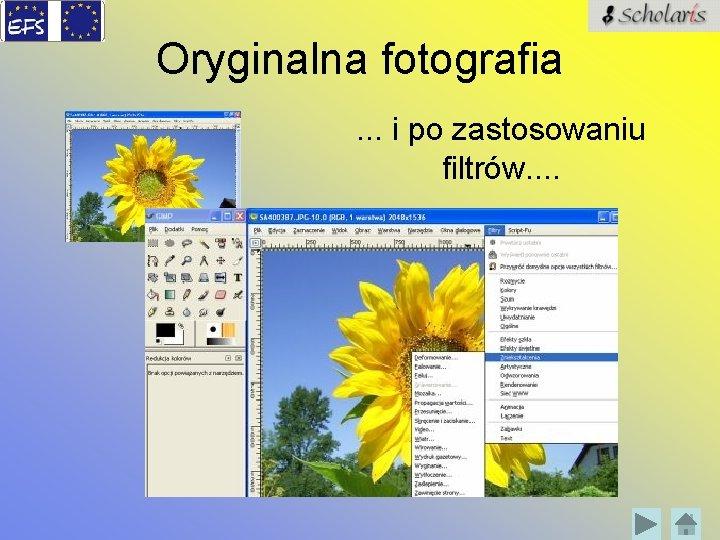 Oryginalna fotografia. . . i po zastosowaniu filtrów. .