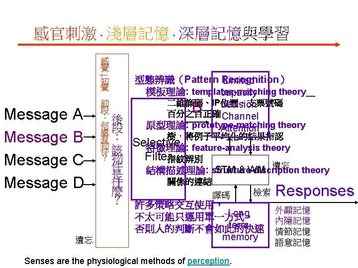 感官刺激、淺層記憶、深層記憶與學習 ↓ 感 覺 知 覺 Message A Message B Message C Message D