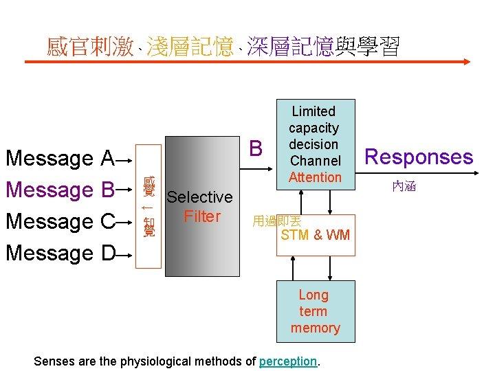 感官刺激、淺層記憶、深層記憶與學習 感 覺 ↓ Message A Message B Message C Message D B 知