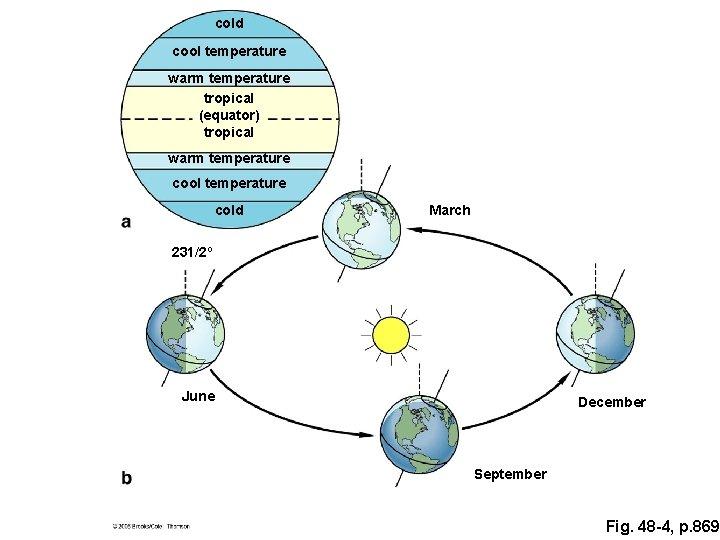 cold cool temperature warm temperature tropical (equator) tropical warm temperature cool temperature cold March