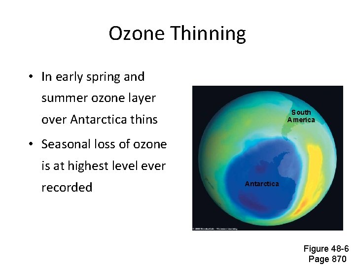 Ozone Thinning • In early spring and summer ozone layer South America over Antarctica