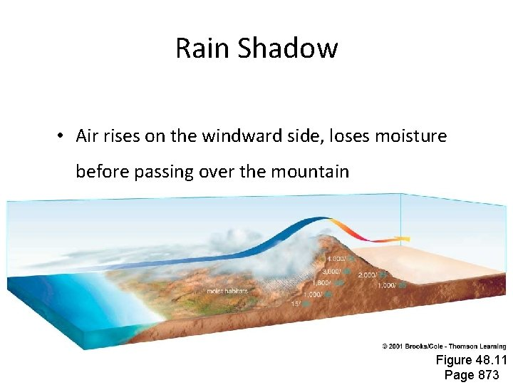 Rain Shadow • Air rises on the windward side, loses moisture before passing over