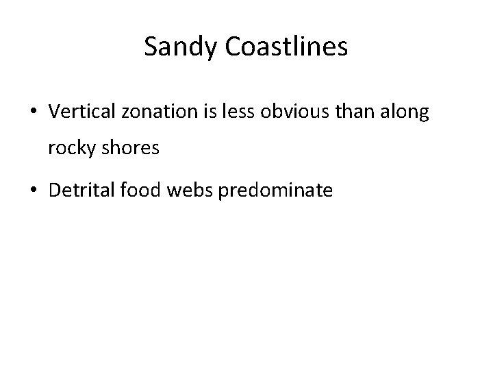 Sandy Coastlines • Vertical zonation is less obvious than along rocky shores • Detrital