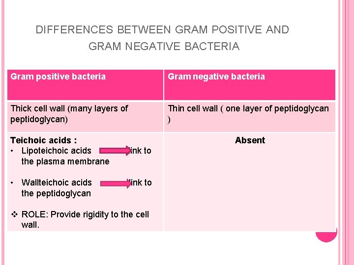 DIFFERENCES BETWEEN GRAM POSITIVE AND GRAM NEGATIVE BACTERIA Gram positive bacteria Gram negative bacteria