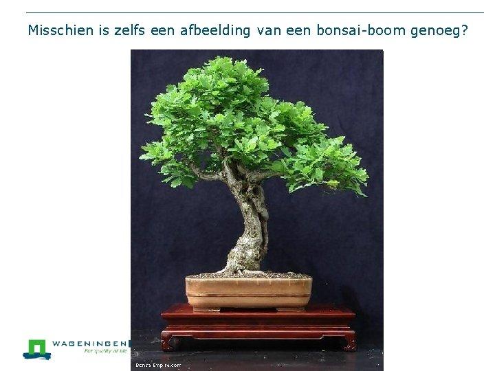 Misschien is zelfs een afbeelding van een bonsai-boom genoeg?