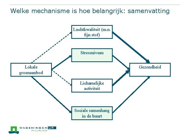 Welke mechanisme is hoe belangrijk: samenvatting Luchtkwaliteit (m. n. fijn stof) Stressniveau Lokale groenaanbod