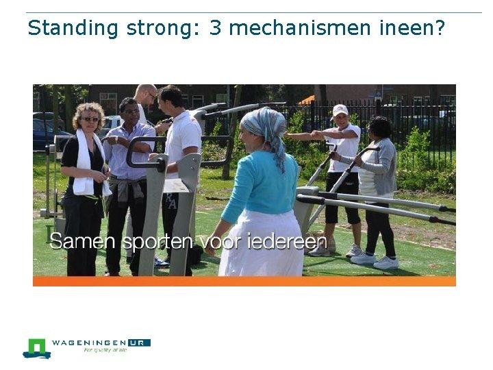 Standing strong: 3 mechanismen ineen?