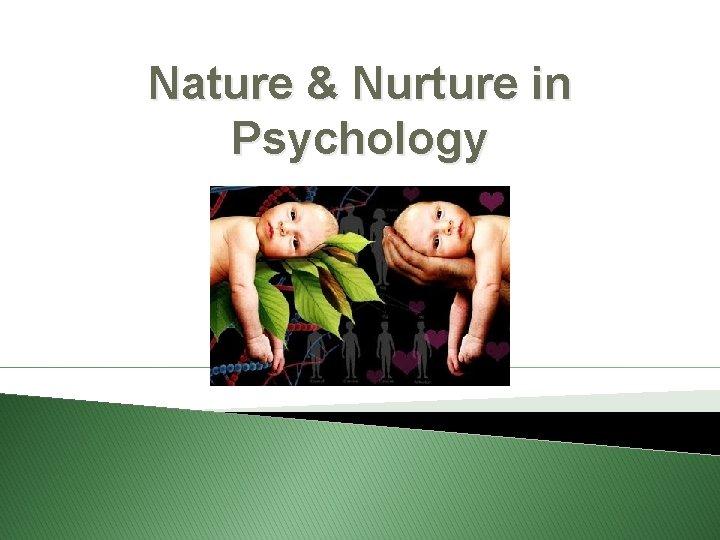 Nature & Nurture in Psychology