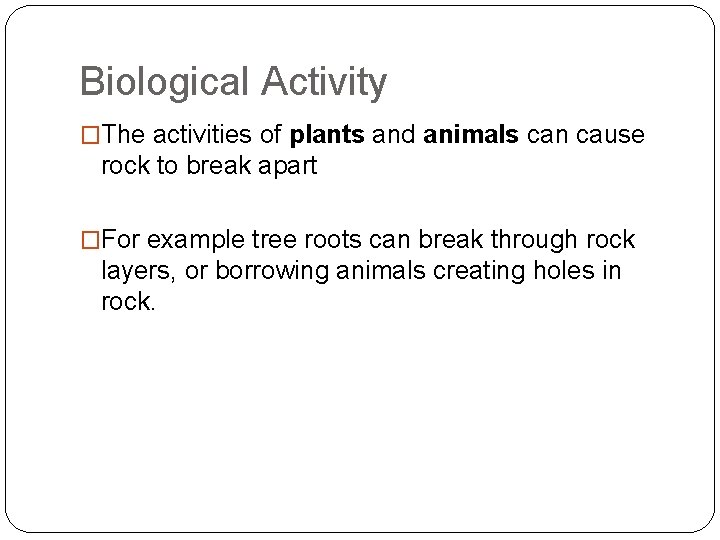 Biological Activity �The activities of plants and animals can cause rock to break apart