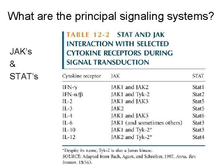 What are the principal signaling systems? JAK's & STAT's