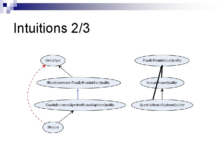 Intuitions 2/3