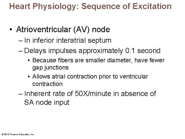 Heart Physiology: Sequence of Excitation • Atrioventricular (AV) node – In inferior interatrial septum