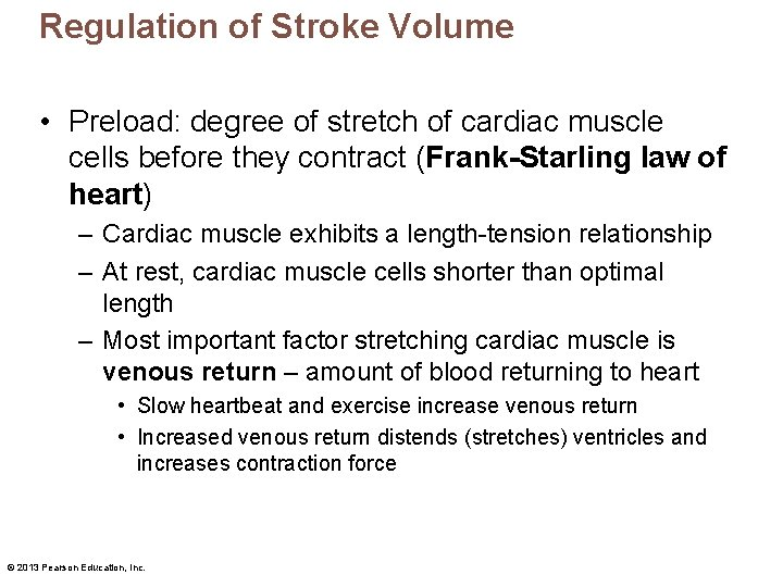 Regulation of Stroke Volume • Preload: degree of stretch of cardiac muscle cells before