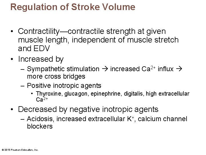 Regulation of Stroke Volume • Contractility—contractile strength at given muscle length, independent of muscle