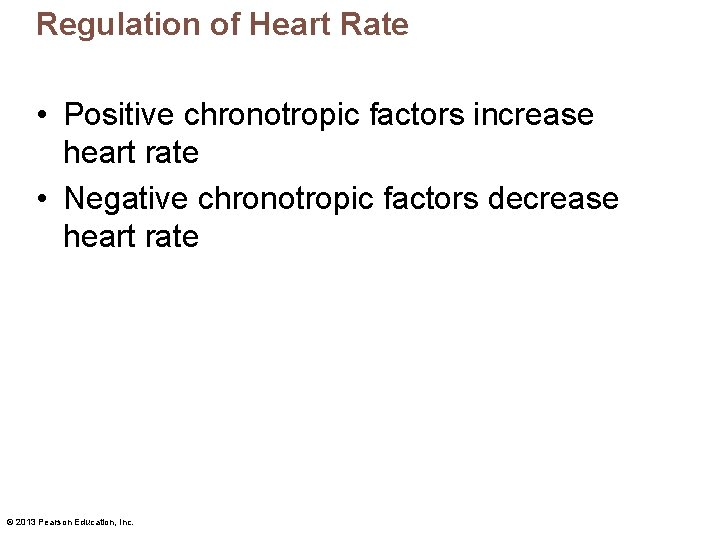 Regulation of Heart Rate • Positive chronotropic factors increase heart rate • Negative chronotropic