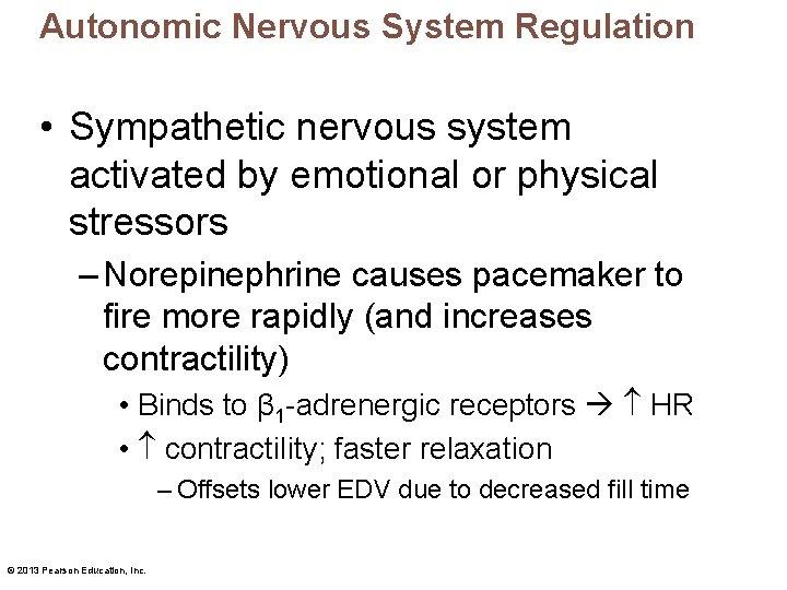 Autonomic Nervous System Regulation • Sympathetic nervous system activated by emotional or physical stressors