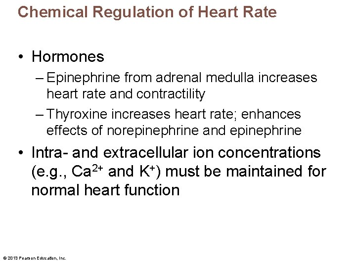 Chemical Regulation of Heart Rate • Hormones – Epinephrine from adrenal medulla increases heart