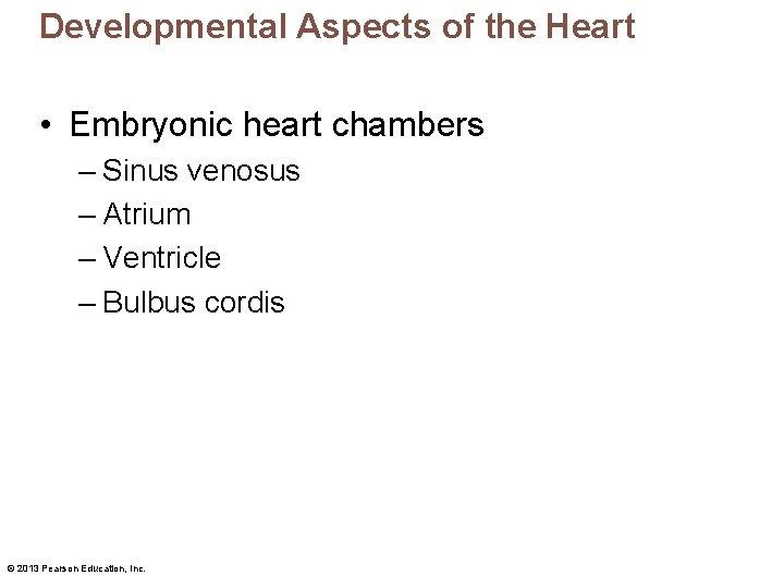 Developmental Aspects of the Heart • Embryonic heart chambers – Sinus venosus – Atrium