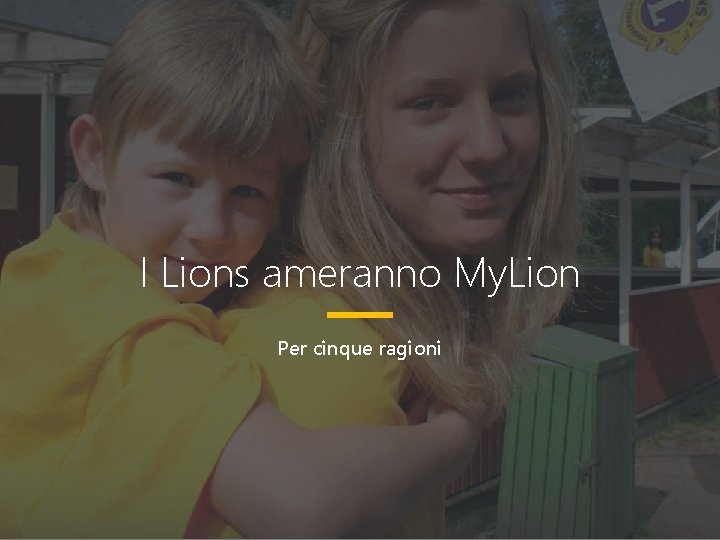 I Lions ameranno My. Lion Per cinque ragioni