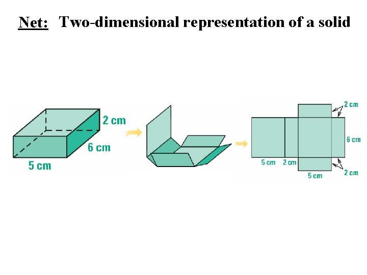 Net: Two-dimensional representation of a solid
