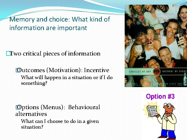 Memory and choice: What kind of information are important �Two critical pieces of information
