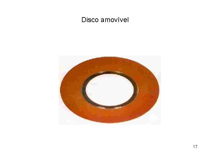 Disco amovível 17