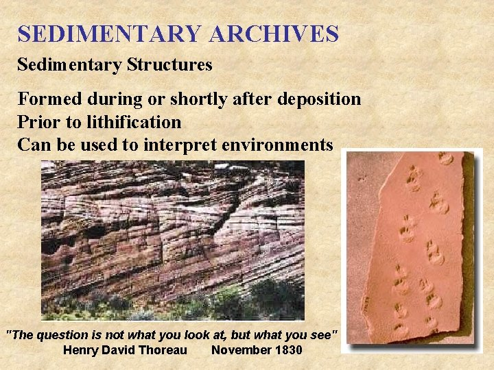 SEDIMENTARY ARCHIVES Sedimentary Structures Formed during or shortly after deposition Prior to lithification Can