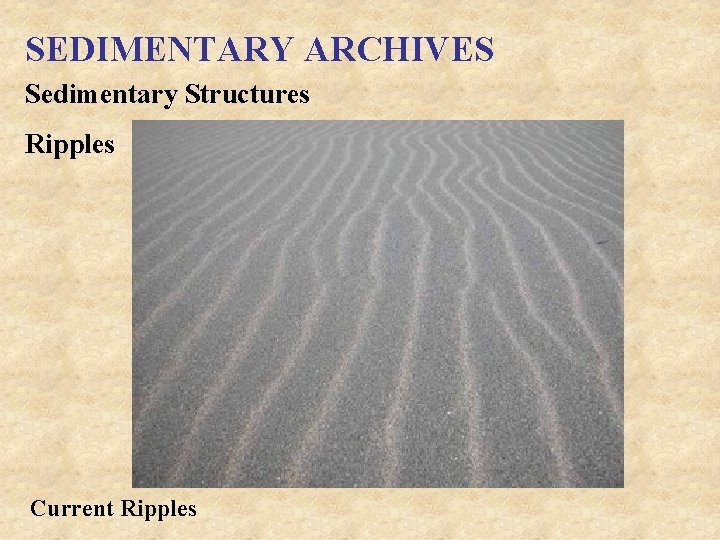 SEDIMENTARY ARCHIVES Sedimentary Structures Ripples Current Ripples