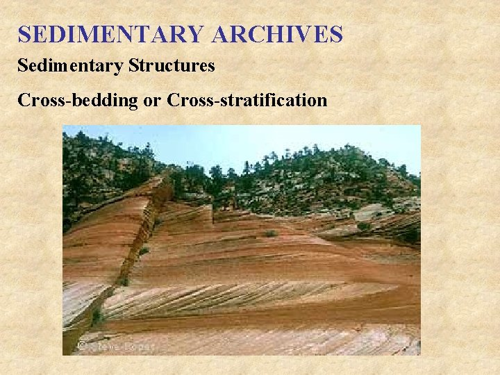 SEDIMENTARY ARCHIVES Sedimentary Structures Cross-bedding or Cross-stratification