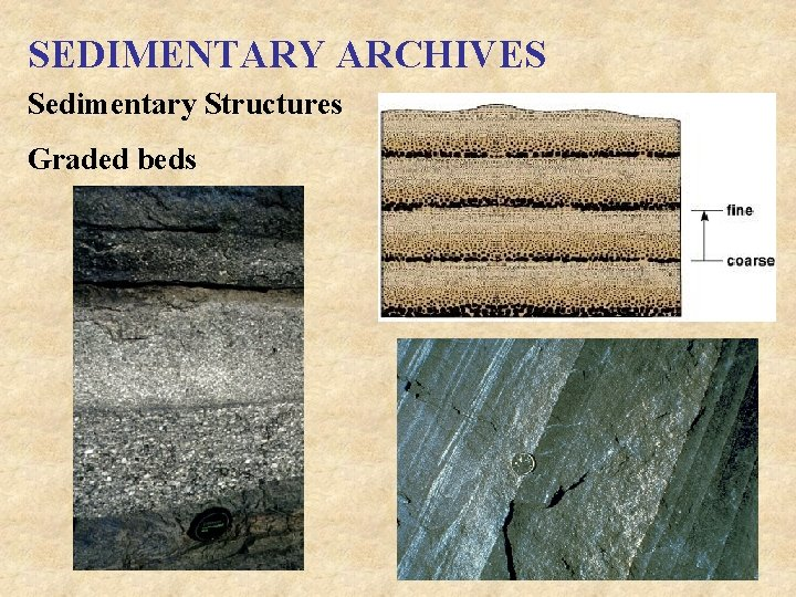 SEDIMENTARY ARCHIVES Sedimentary Structures Graded beds