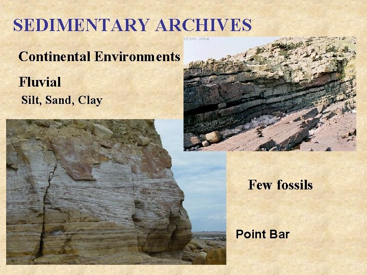 SEDIMENTARY ARCHIVES Continental Environments Fluvial Silt, Sand, Clay Few fossils Point Bar
