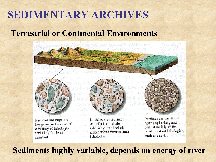 SEDIMENTARY ARCHIVES Terrestrial or Continental Environments Sediments highly variable, depends on energy of river