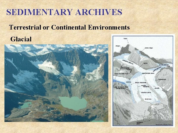SEDIMENTARY ARCHIVES Terrestrial or Continental Environments Glacial