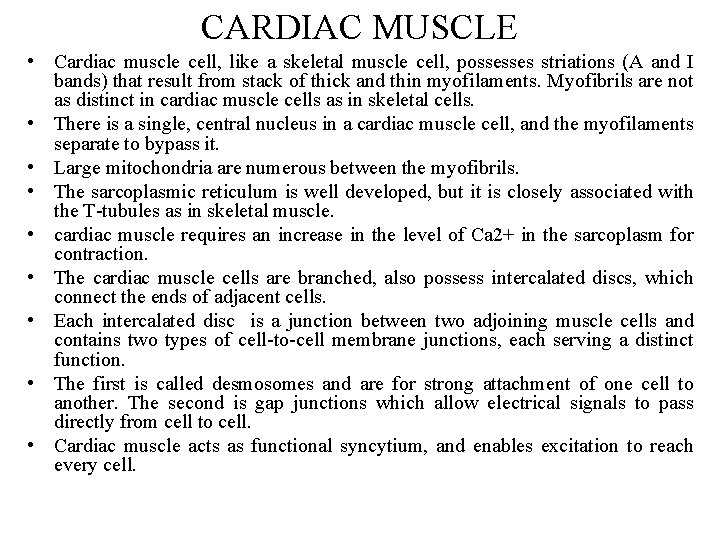 CARDIAC MUSCLE • Cardiac muscle cell, like a skeletal muscle cell, possesses striations (A