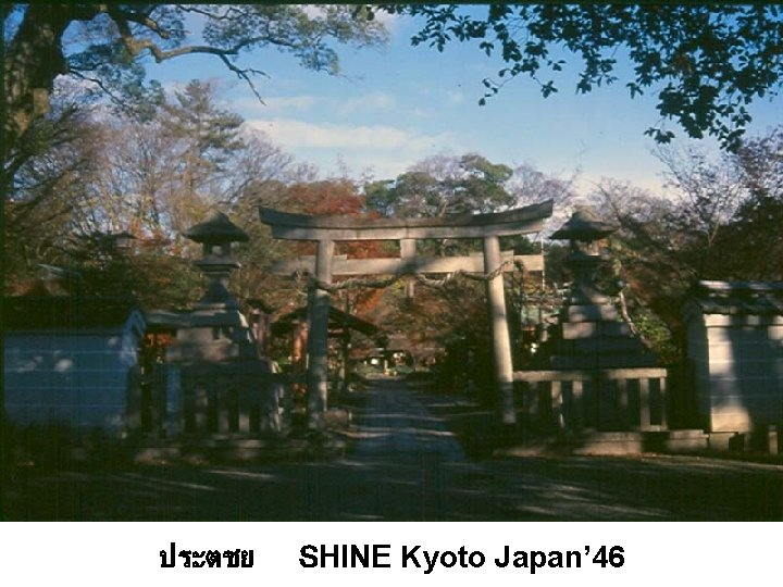 ประตชย SHINE Kyoto Japan' 46