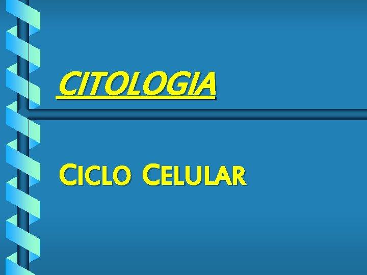 CITOLOGIA CICLO CELULAR