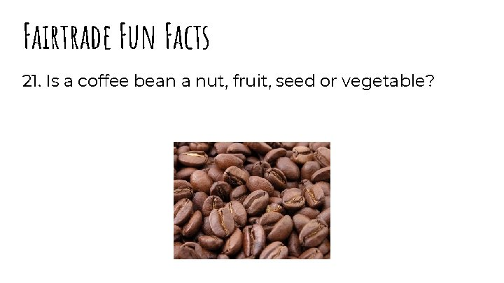 Fairtrade Fun Facts 21. Is a coffee bean a nut, fruit, seed or vegetable?