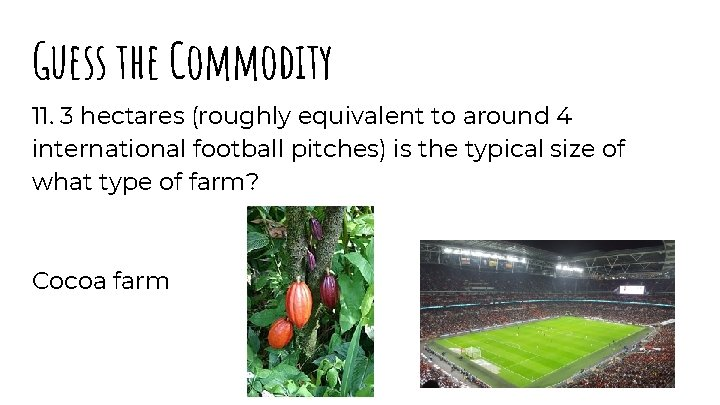 Guess the Commodity 11. 3 hectares (roughly equivalent to around 4 international football pitches)