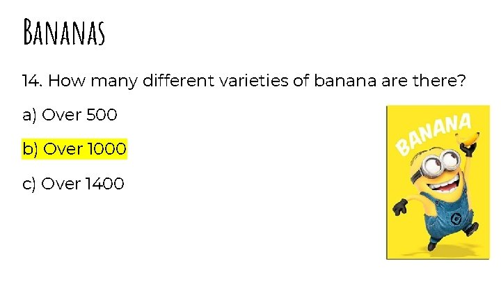 Bananas 14. How many different varieties of banana are there? a) Over 500 b)